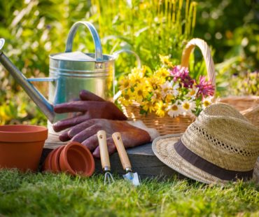 Ergonomic tools make gardening easier
